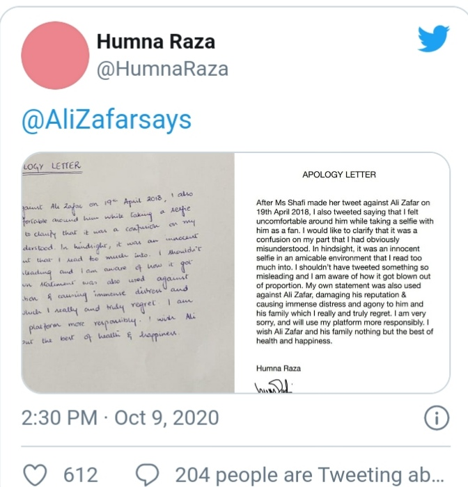Blogger Hamna Raza apologizes from Ali Zafar