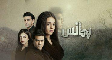 Top 5 Dramas To Watch